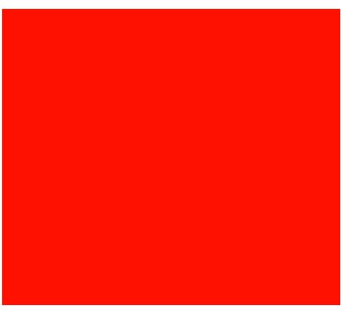熊本RAO